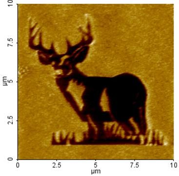 Thin Films Nanolithography (XELScanning Probe Nanolithography is a very promising technology for nanofabrication. It uses the probe tip of scanning probe microscope to manipulate materials at nanometer scale. T  Figure 1.  A Big Buck pattern made on a silicon substrate using bias mode XEL Nanolithography. The pattern is made on a silicon surface using the Raster scan mode.