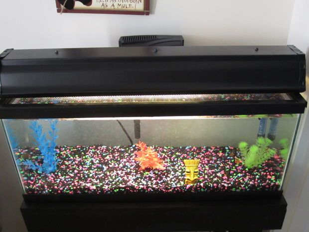 24 best tropical fish tank images on pinterest fish for Fish tank hood