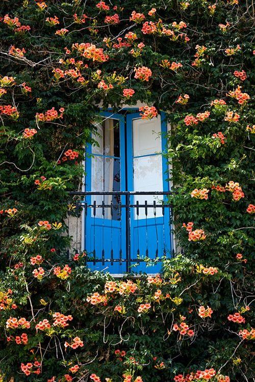 Blue Doors, Milan, Italy photo via paloma