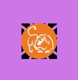 Leo Horoscopes - Get Your Leo Horoscope from HollywoodPsychics.co