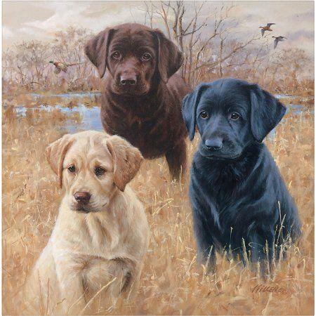 Black Lab Labrador Dog Breed Novelty Coaster Set