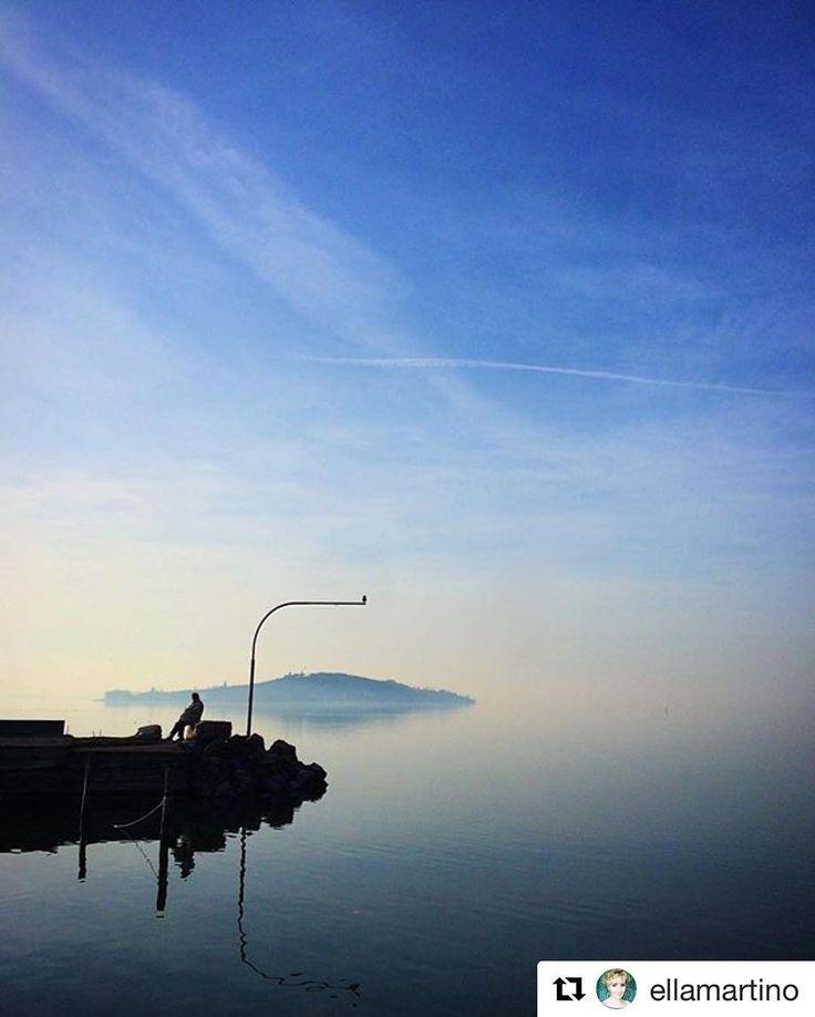 #Repost @ellamartino  Solitude on the lake/Очень зимняя фотография. Отражает мое состояние сейчас. Хорошего вам вечера! #trasimenolake #italy #umbria #sanfeliciano