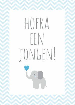 Hoera een jongen, olifantje - Felicitatiekaarten - Kaartje2go