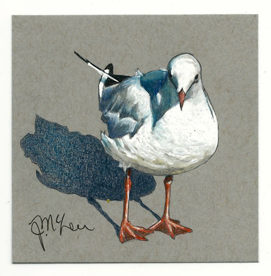 """""""wanna French Fry?"""" Seagull standing in his shadow done on Strathmore 4""""x4"""" grey tiles using Faber Castell artist watercolor pencils and Uniball Signo gel white pen"""