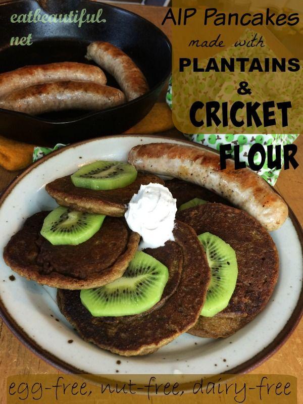 26 best recipes insect flour images on pinterest cricket flour aip plantain cricket flour pancakes fandeluxe Images