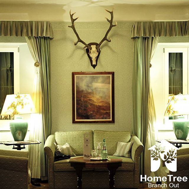 Whether you own apartment complex, commercial property, rental home, or a condo, we'll handle it all in a professional, efficient manner.  #HomeTree #ShortTermRentals #VacationRentals #home #housing #listing #mortgage #homeinspection #creditreport #shopstemdesigns #vacation #visiting #instatravel #instago #instagood #trip #holiday #photooftheday #travelling #tourism #tourist #relocating #realestateagent #househunting #weekends #homeaway #propertymanager #homeimprovement #airbnb #guesthouse…