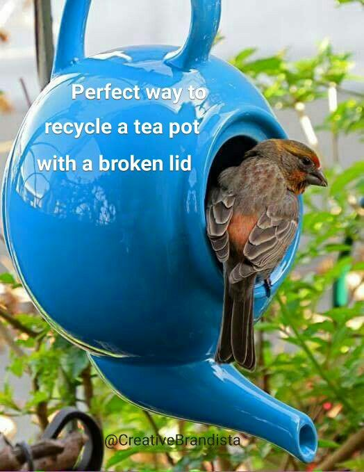 Perfect way to recycle a tea pot with a broken lid. Garden decor. Ceramic bird feeder. Vintage yard decor.