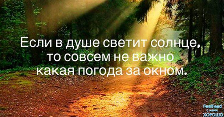 23754988_1990404817890709_4563428974846740016_n.jpg (960×504)