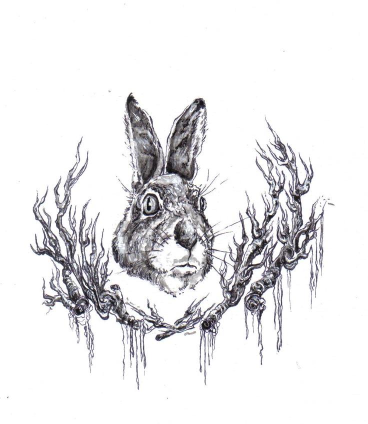 hare ink work illustration
