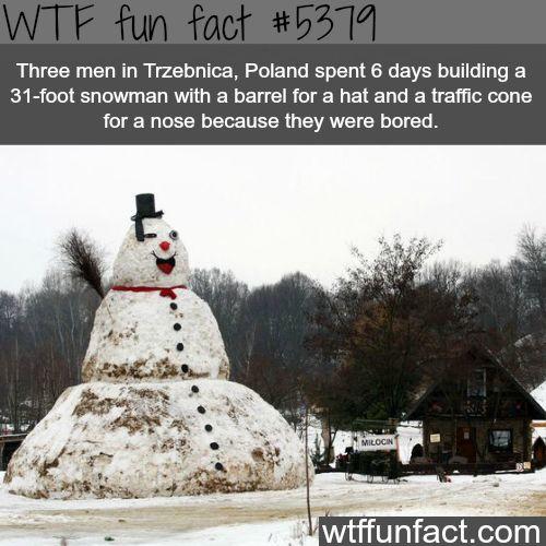 Three men in Poland built a 31-foot snow man - WTF fun facts