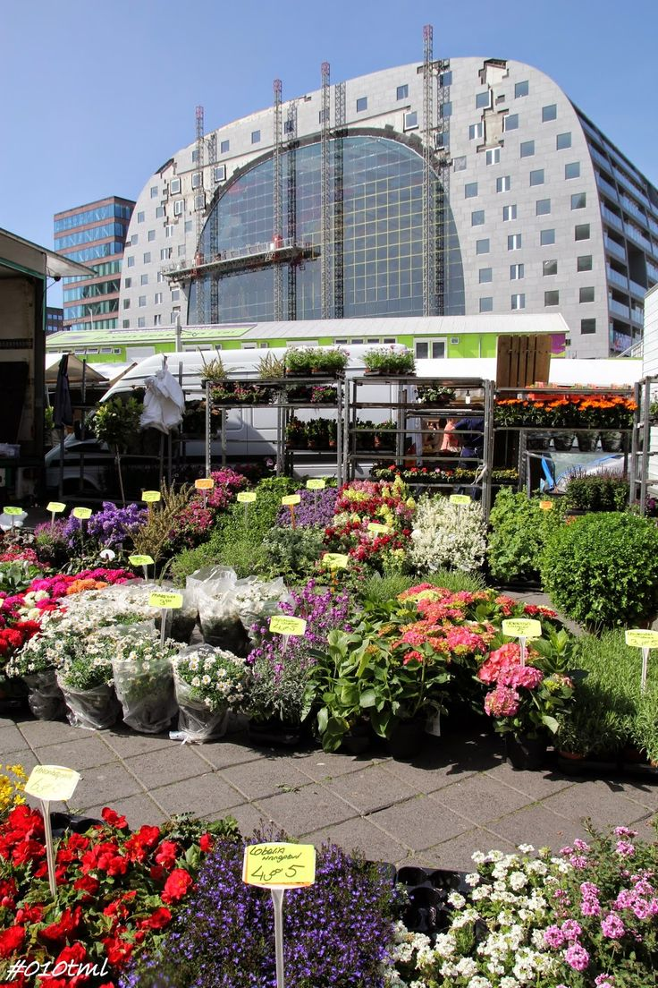 The new Markthal (market hall) and flower market Rotterdam. Amazing piece of architecture!