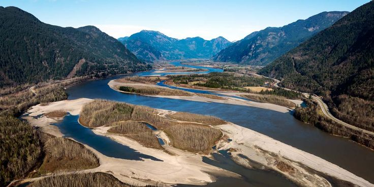 Raincoast and Living Oceans detailed concerns over the use of spawning deterrents in important Chinook salmon spawning area in this letter to the National Energy Board.
