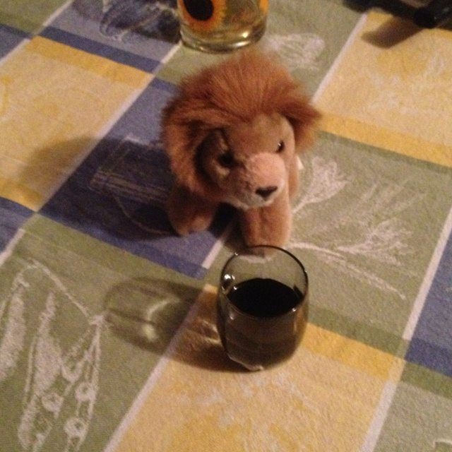 Sergio assaggia l'ottimo liquore alla liquirizia di @ariannathor