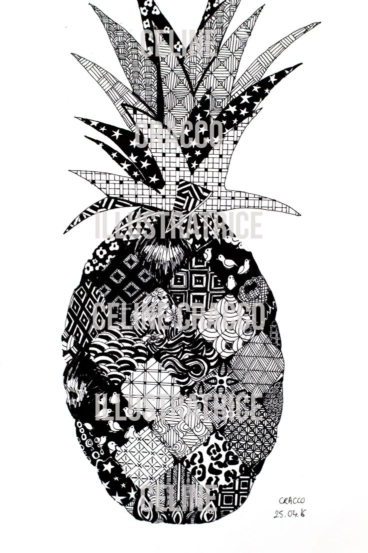 Pineapple zentangle Celine Cracco