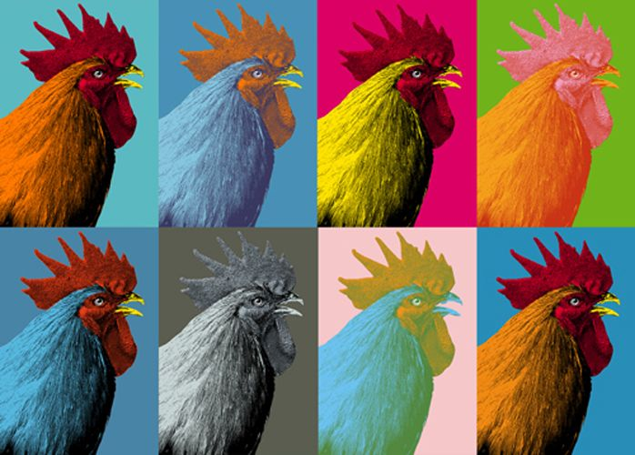 The Pop Art Chicken by ~Chicken-Design on deviantART
