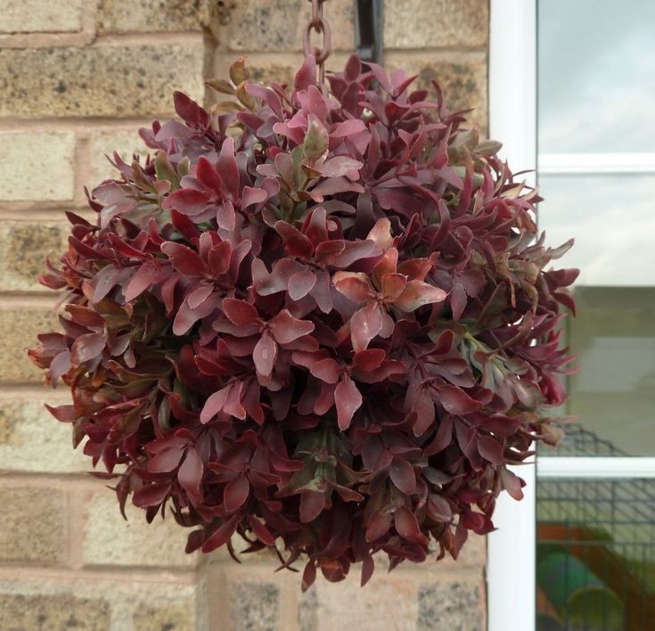 Artificial Topiary Balls 20cm Burgundy Red & Green Artificial Buxus Boxwood Ball #UKGardens