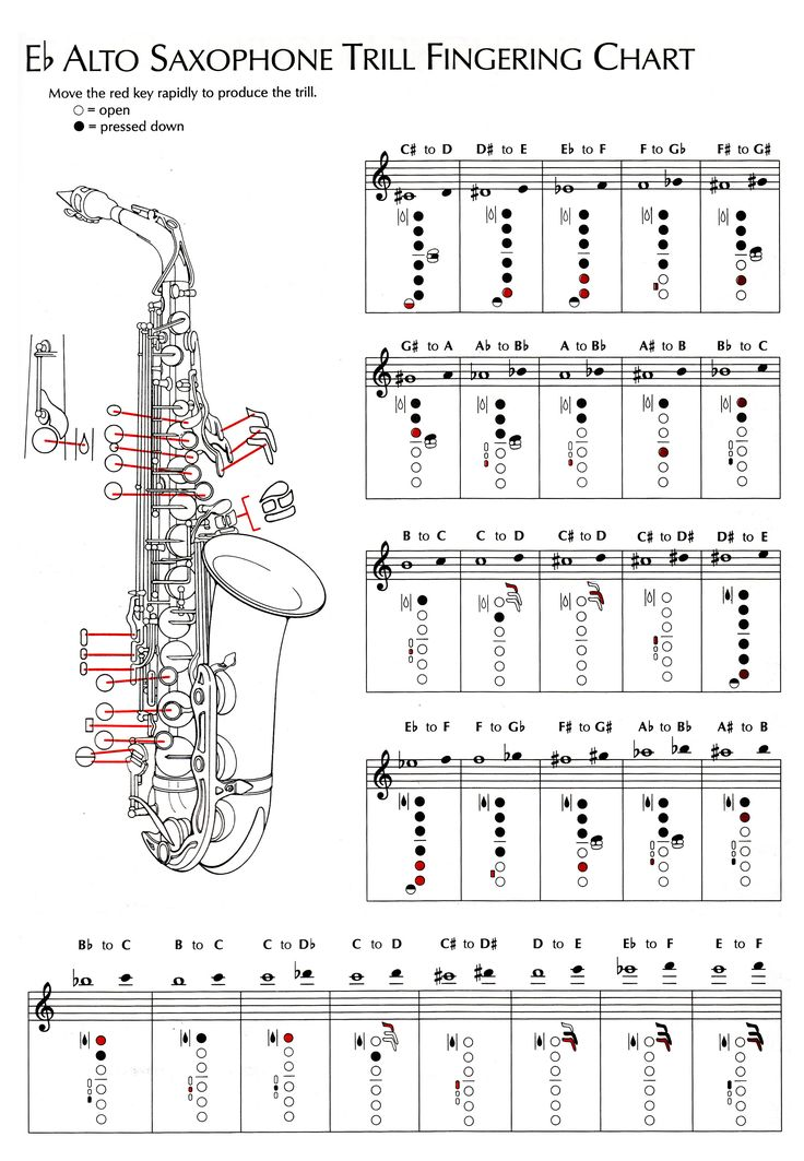 20 best Saxophones images on Pinterest Saxophones, Jazz - clarinet fingering chart