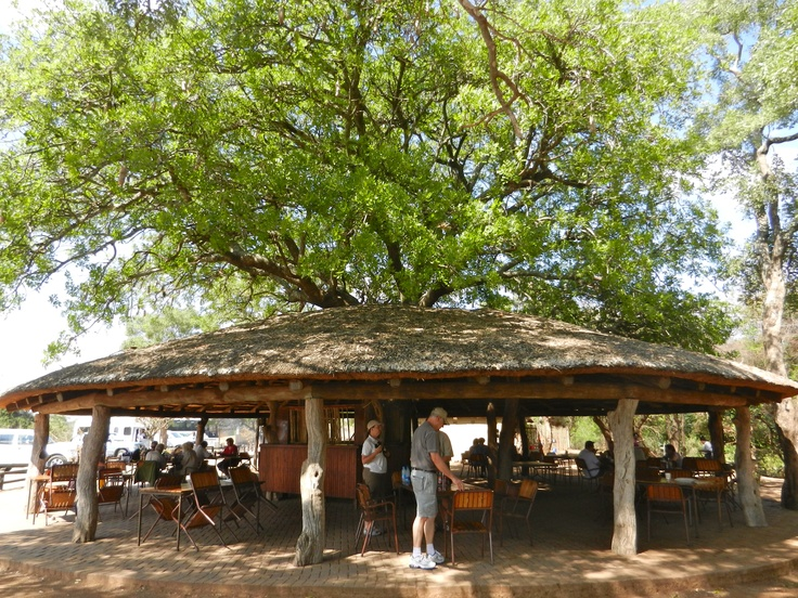 Tshokwane Picnic Site - here you can make your own breakfast or have a picnic plus they have a small restaurant where you can get food freshly made to order.