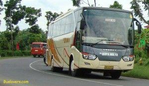 sedya mulya rute Bali yogya  buslovers.com