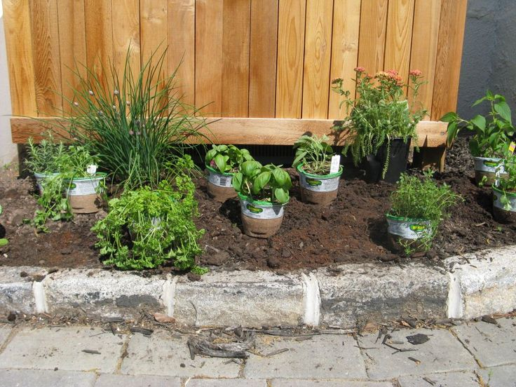 Best Patio Herb Gardens Ideas Only On Pinterest Gardening