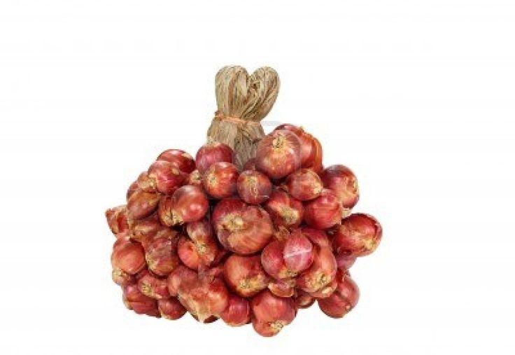 shallots onion - Google Search