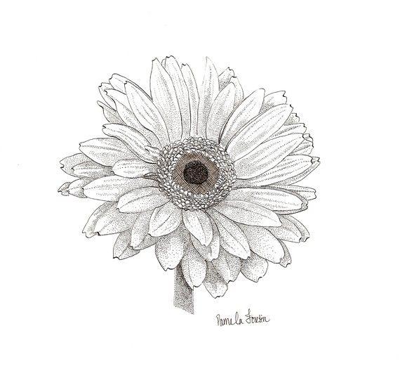 gerbera daisy for Missy <3