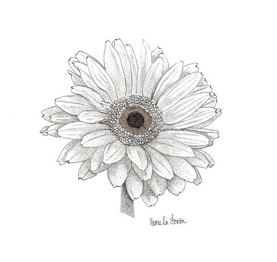 North Circle Studio - Melissa's Gerbera Daisy is an original pen and ink drawing. One of my besties favorite flowers. I just had to name it after!