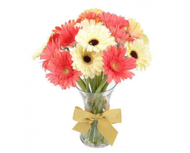 Flowers Delivery In Delhi Flower Delivery Gerbera Flower Online Flower Shop