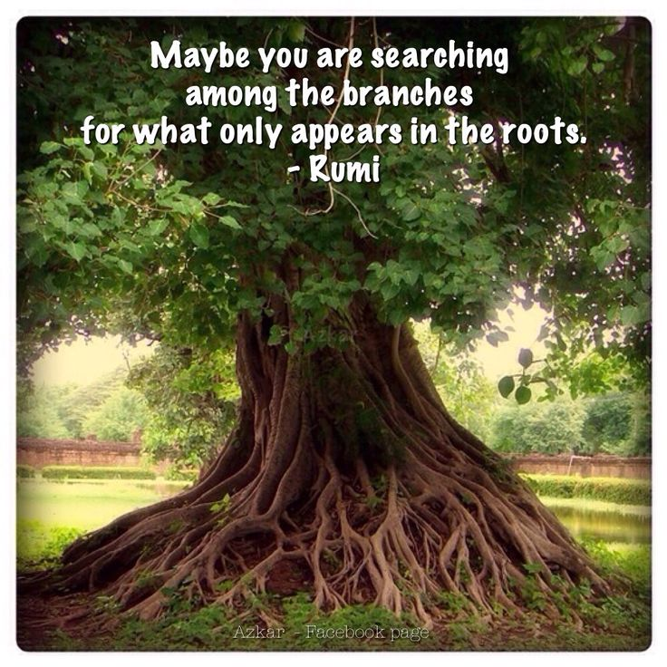 17 Best images about Sufi Poetry - Quotes on Pinterest   Searching, Mists and Mosques