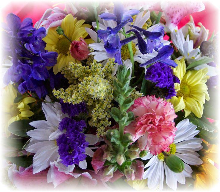 Blogul Dianei: Florile ne fac mai fericiti si mai norocosi in dra...