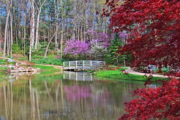 """Look at which public garden is included in """"The 13 Most Beautiful Gardens You'll Ever See in Virginia! 11. Edith J. Carrier Arboretum and Botanical Gardens at James Madison University,  Harrisonburg"""