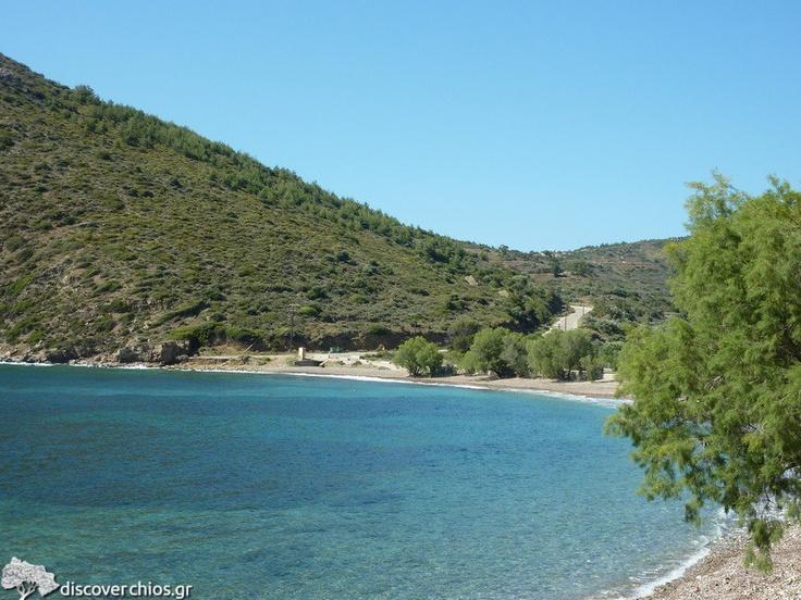 Metohi Beach, near Sidirounta Village http://www.discoverchios.gr/metohi