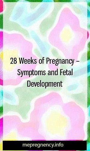 28 weeks of pregnancy – symptoms and fetal development   – 1st Pregnancy Training
