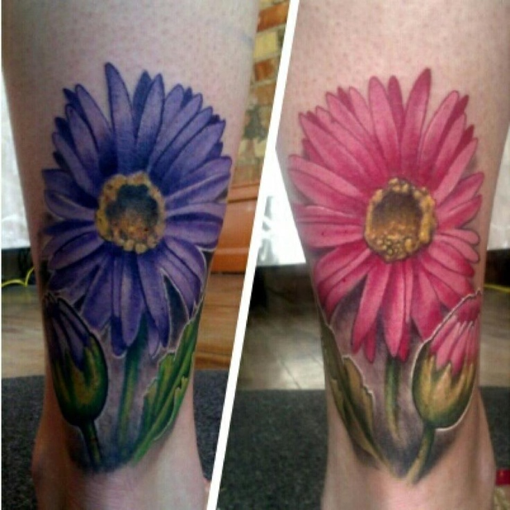 Pink Daisy Tattoo: Purple And Pink Gerber Daisy Tattoos By Mike Riina At