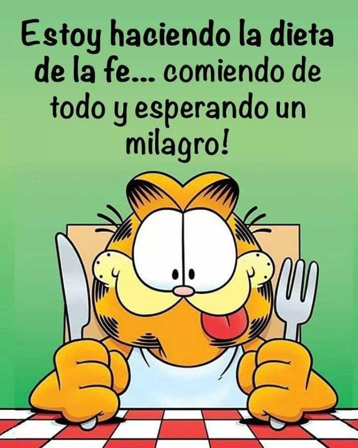 Frases Citas Garfield Imagenes Dibujos De Cartoon Network Garfield Y Sus Amigos