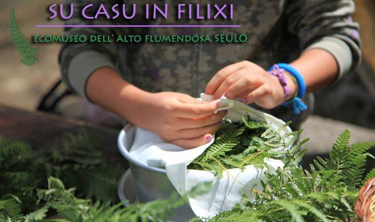 SEULO 18 - 19 LUGLIO: SU CASU IN FILIXI