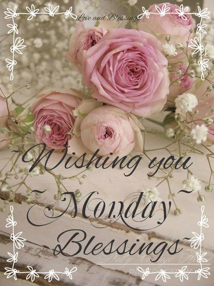 Monday blessings! ❤️