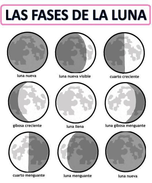 Resultado de imagen de actividades fases de la luna infantil