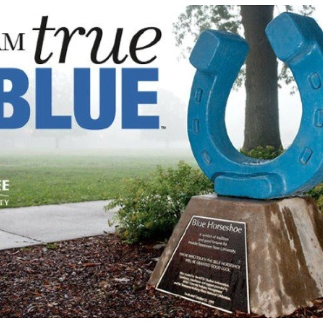 Middle Tennessee State University >> Middle Tennessee state university   The Boro   Pinterest