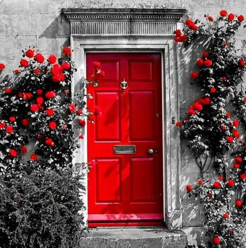Best Red For Front Door: 16 Best Grey House, Color Door Images On Pinterest