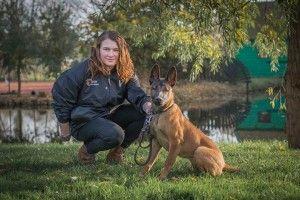 De hondengeleider heeft een uitgebreide ervaring met haar gecertificeerde diensthond.  Door haar jaren lange band met de hond, heeft ze de hond goed onder controle en zodoende kan zij u de geschiktheid van deze hond garanderen.