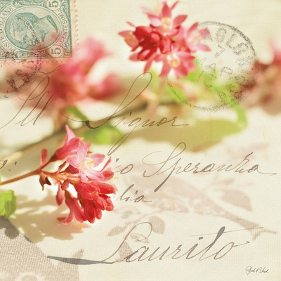 Red pink flowers and vintage post marks