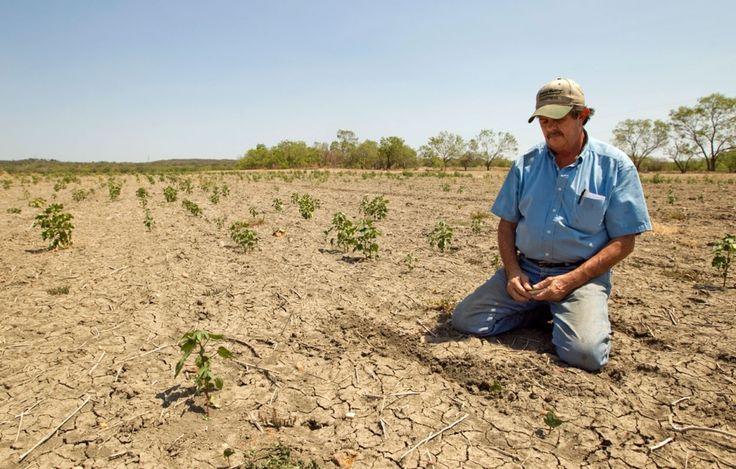 Sequía en Italia provocó racionamiento