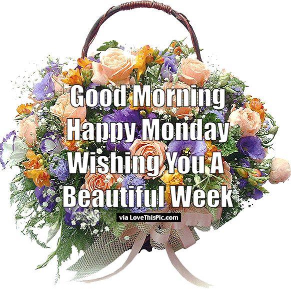Good Morning Happy Monday Wishing You A Beautiful Week monday good morning…