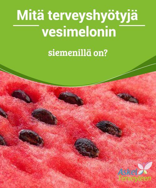 Mitä terveyshyötyjä vesimelonin siemenillä on?  Vesimeloni on #herkullinen ja virkistävä hedelmä, joka sisältää nimensä #mukaisesti runsaasti vettä, sekä #antioksidantteja.  #Terveellisetelämäntavat