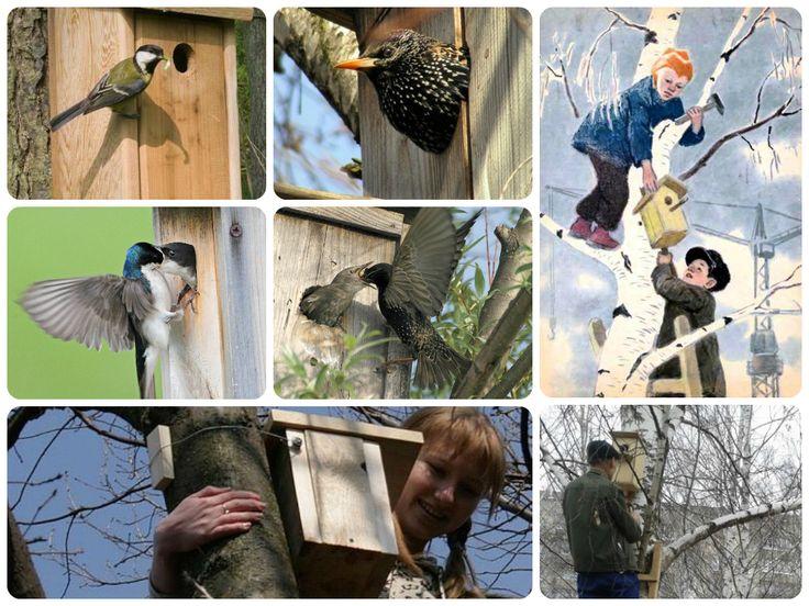 Скворечник -домик для птиц.