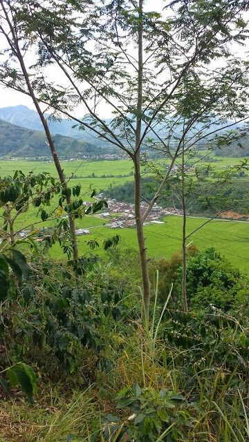 Near Takengon, Central Aceh