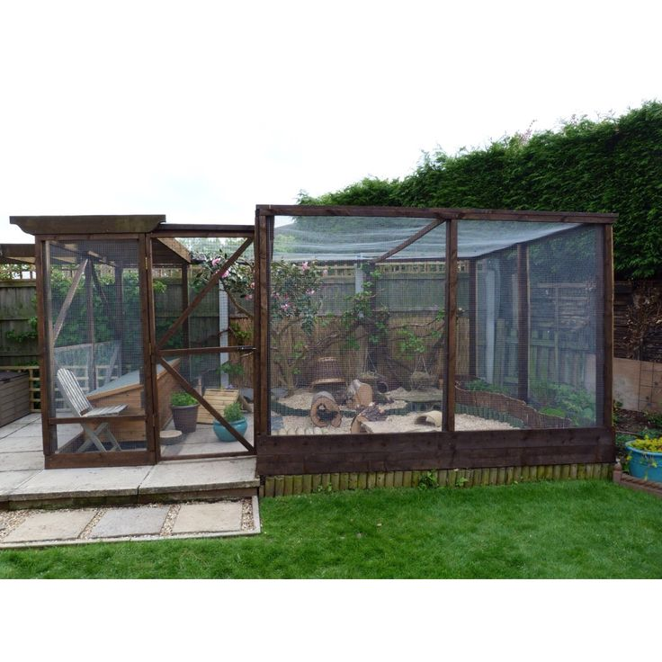 1000 ideas about guinea pig run on pinterest rabbit for Outdoor guinea pig cage