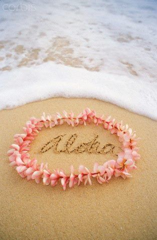 Relaxing on the beach and experiencing the aloha spirit- yes please!