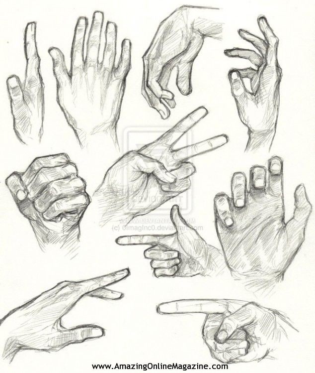 121 best how to draw... palm/hand/shoulder images on Pinterest ...
